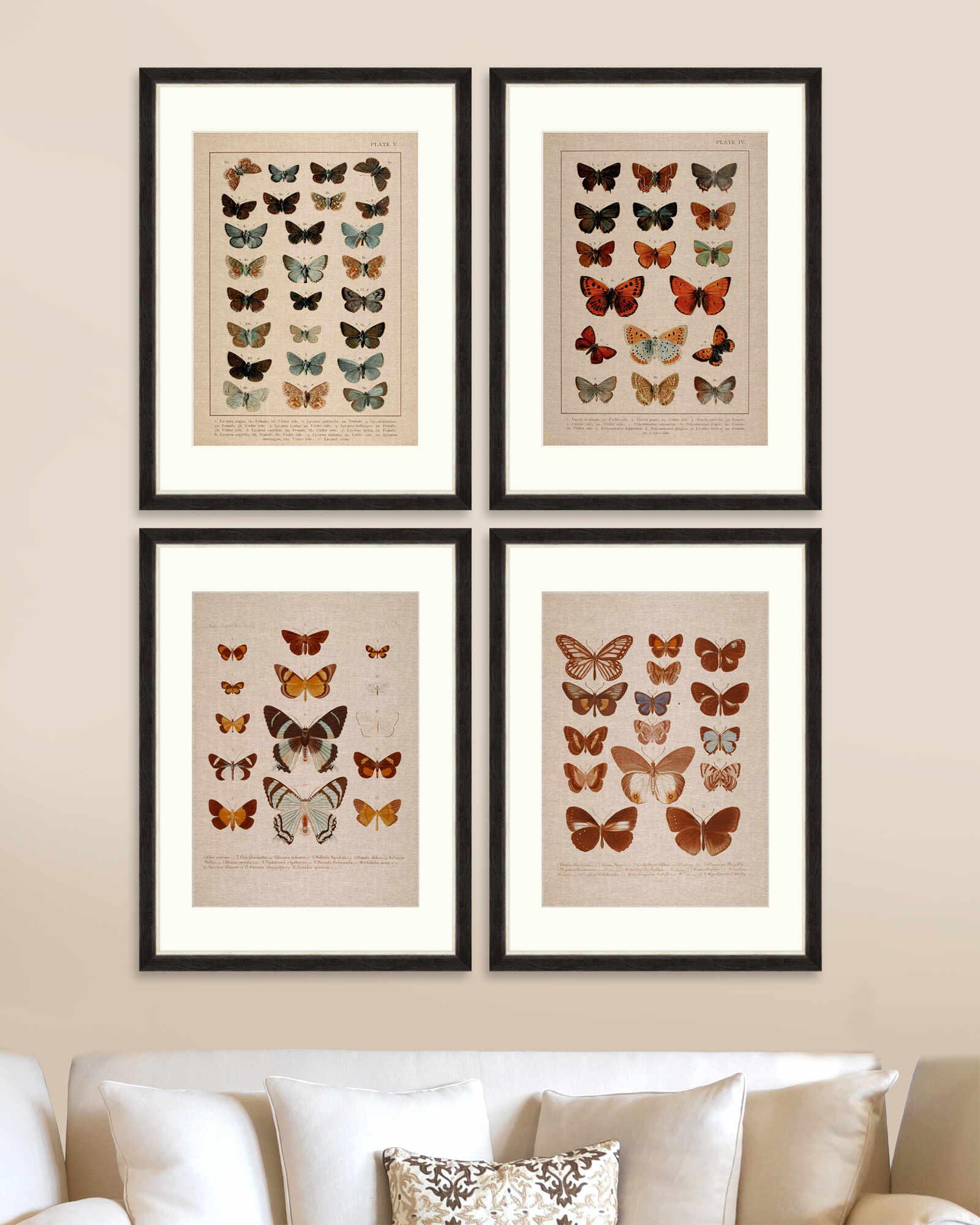 Tablou 4 piese Framed Linen Butterflies Plate I & IV la pret 1744 lei