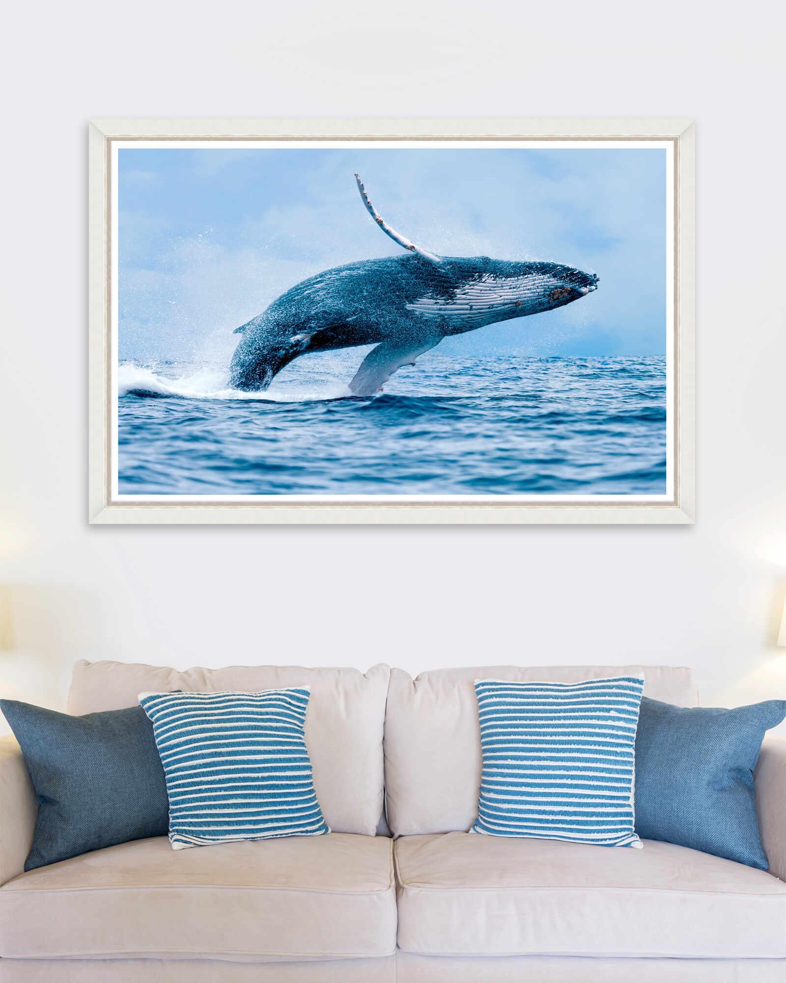 Tablou Framed Art The Whale la pret 735 lei