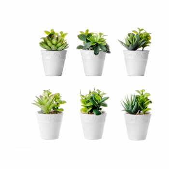 Set 6 flori artificiale cu ghiveci Unimasa la pret 151 lei