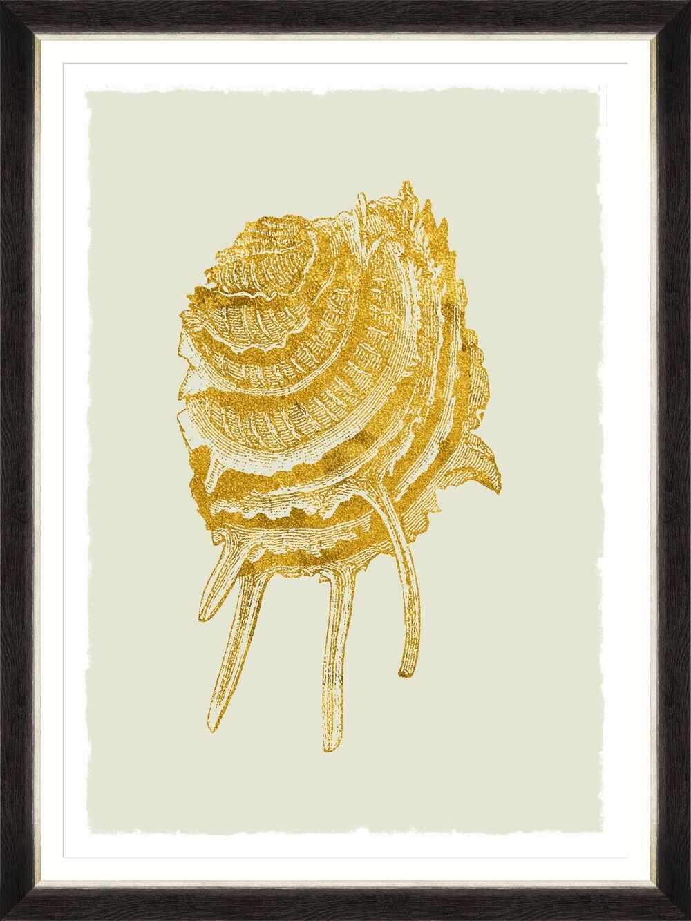 Tablou Framed Art Golden Seashell V la pret 638 lei