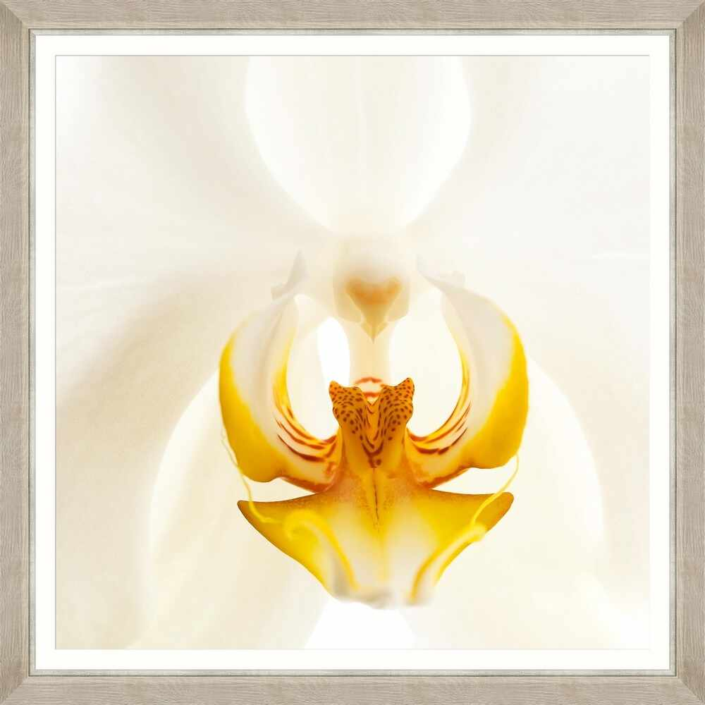 Tablou Framed Art Orchid Bloom II la pret 690 lei