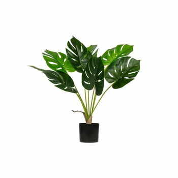 Monstera artificială WOOOD, înălțime 70 cm