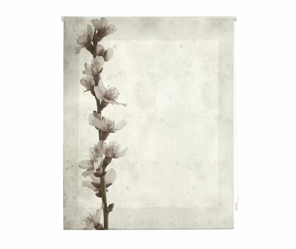 Jaluzea tip rulou Growth 180x250 cm la pret 259.99 lei