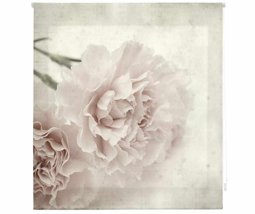 Jaluzea tip rulou Sepia Bloom 160x180 cm la pret 289.99 lei