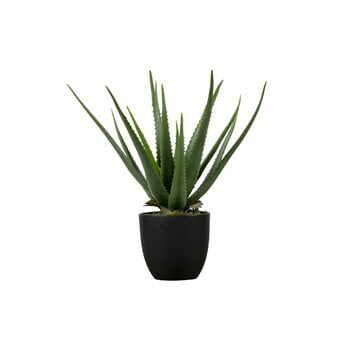 Aloe vera artificială WOOOD, înălțime 55 cm