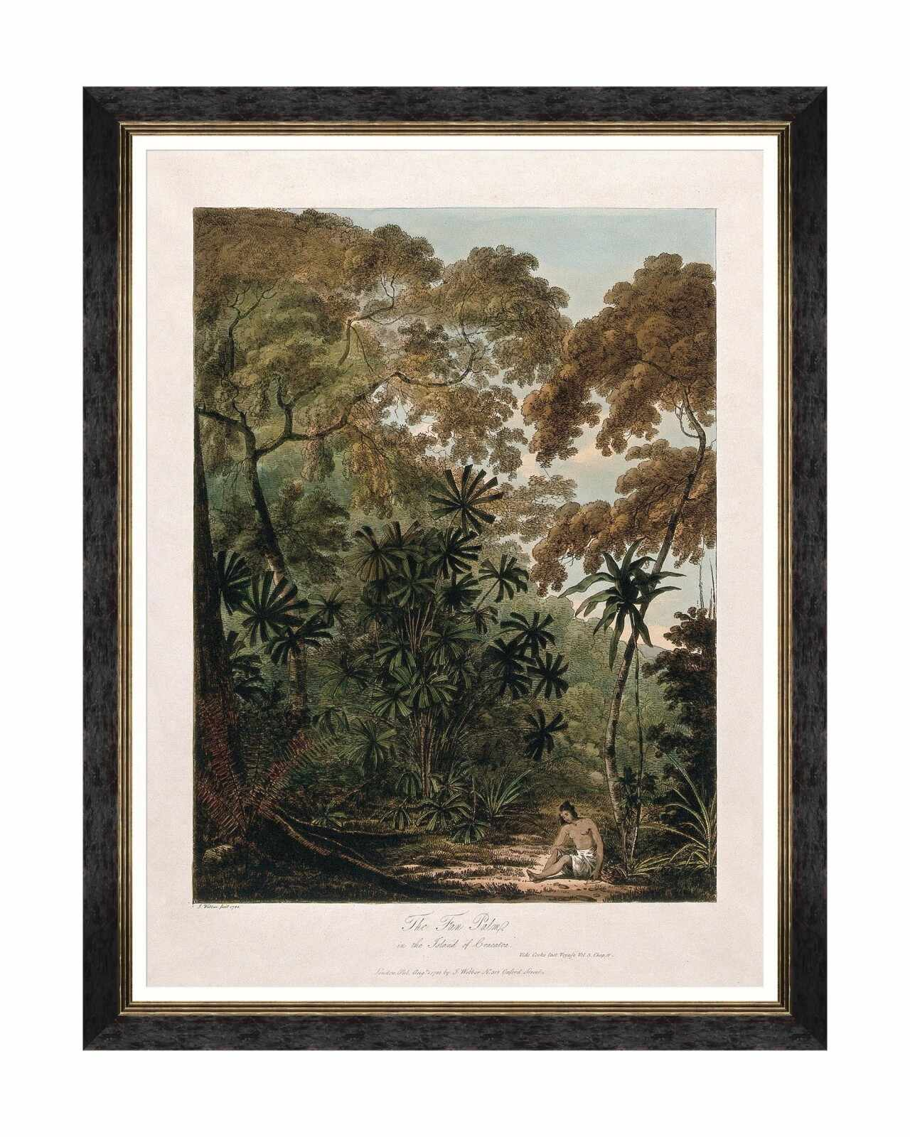 Tablou Framed Art Trees Of Krakatoa - The Fan Palm, 60 x 80 cm