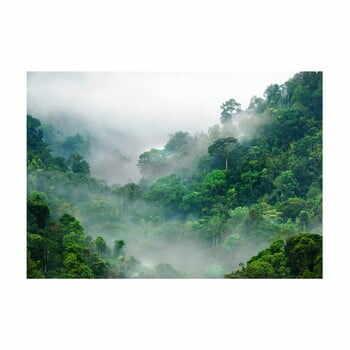 Tapet în format mare Artgeist Morning Fog, 400x280cm la pret 482 lei