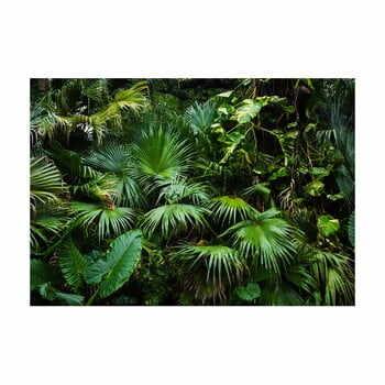 Tapet în format mare Artgeist Sunny Jungle, 400x280cm la pret 484 lei