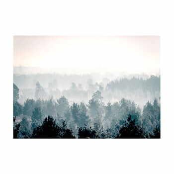 Tapet în format mare Artgeist Winter Forest 400x280cm la pret 482 lei