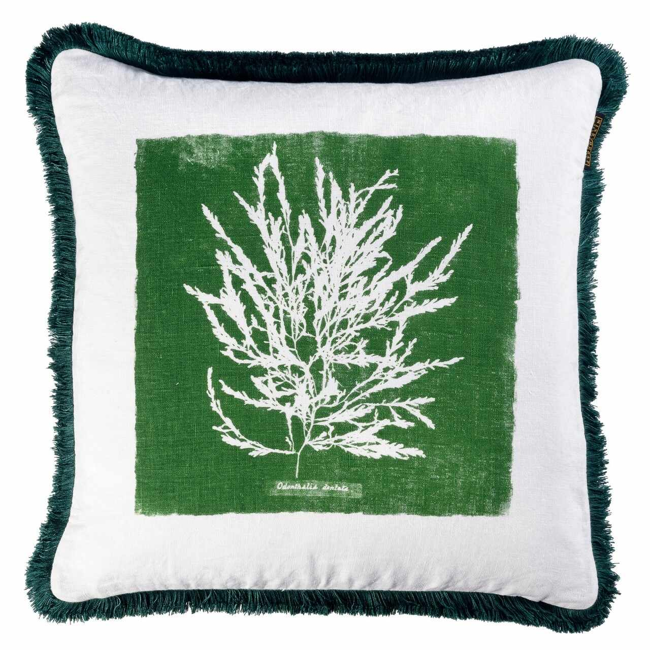Perna decorativa Algae I Verde / Alb, L50xl50 cm la pret 716 lei