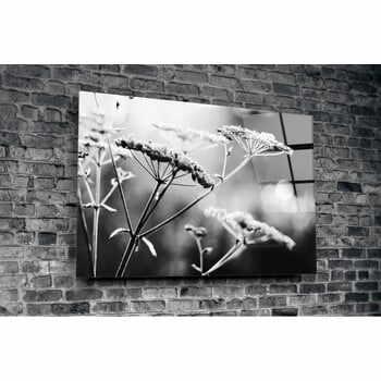 Tablou din sticlă Insigne Hanuco, 72 x 46 cm la pret 162 lei