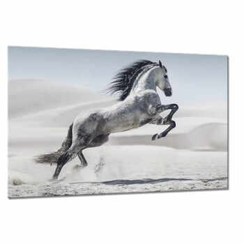 Tablou Styler Glasspik Animals Horse, 80 x 120 cm