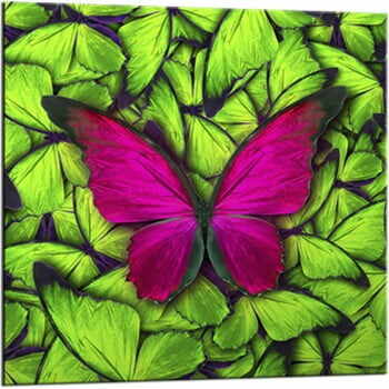 Tablou Styler Glasspik Green Butterfly, 20 x 20 cm