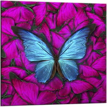 Tablou Styler Glasspik Red Butterfly, 20 x 20 cm