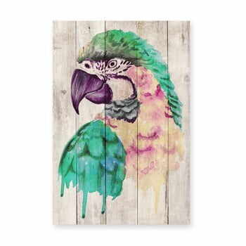 Decorațiune din lemn de pin pentru perete Madre Selva Watercolor Parrot, 60 x 40 cm la pret 219 lei