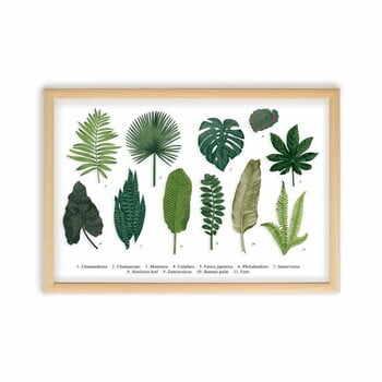 Tablou Surdic Leafes Guide, 50 x 70 cm la pret 243 lei