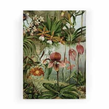 Tablou Velvet Atelier Potion, 50 x 70 cm la pret 233 lei